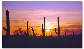 Image: desertusa.com